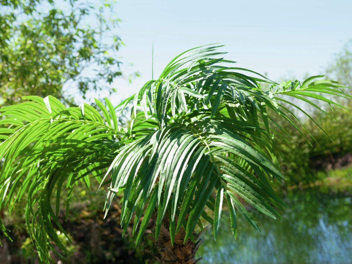 palmier-artificiel-300cm-3.