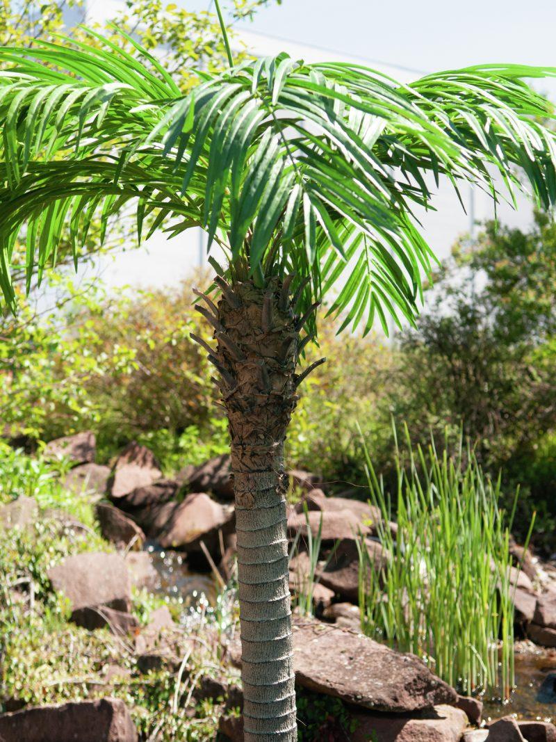 palmier-artificiel-300cm-7