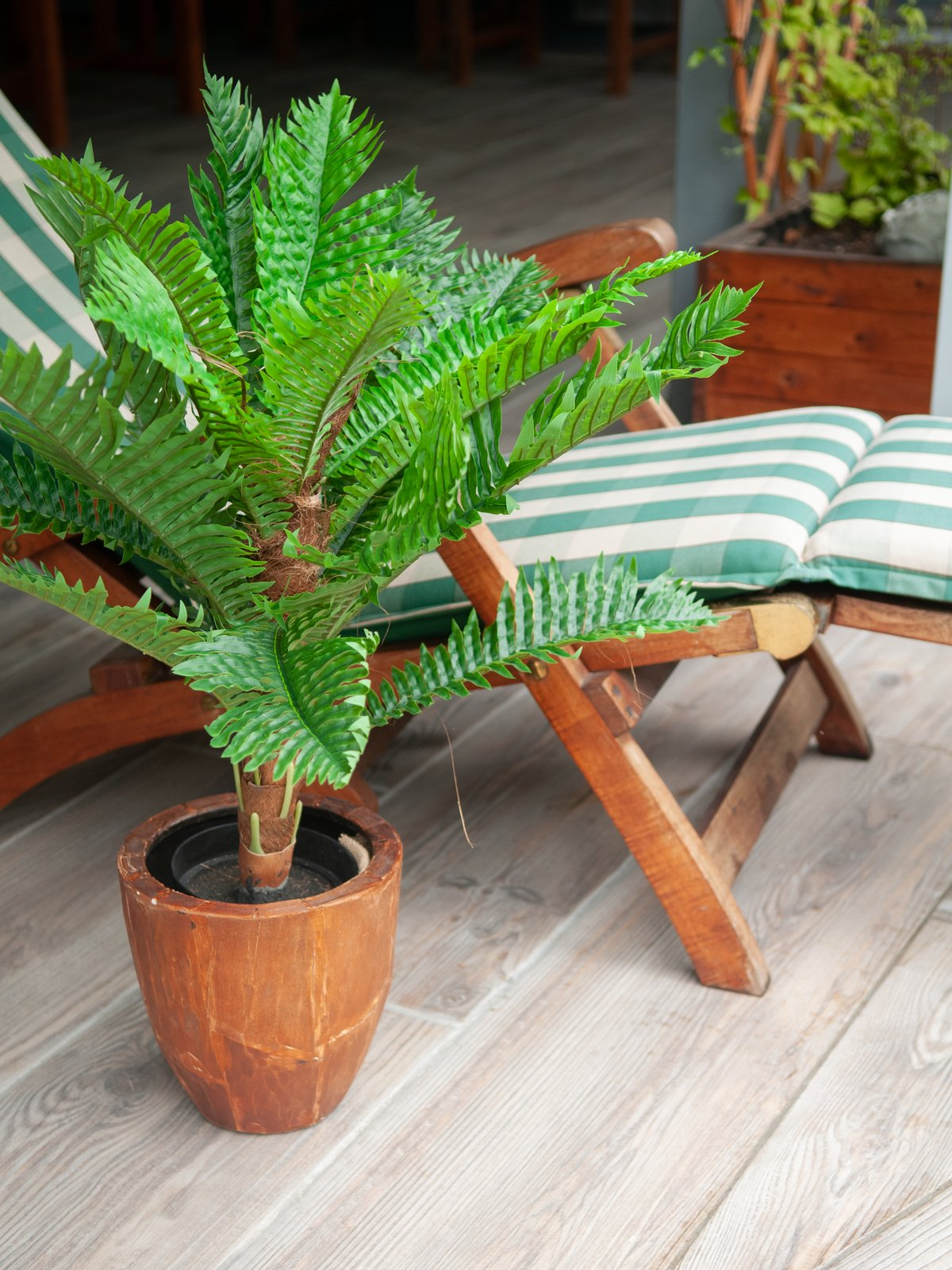 cycas-artificiel-5