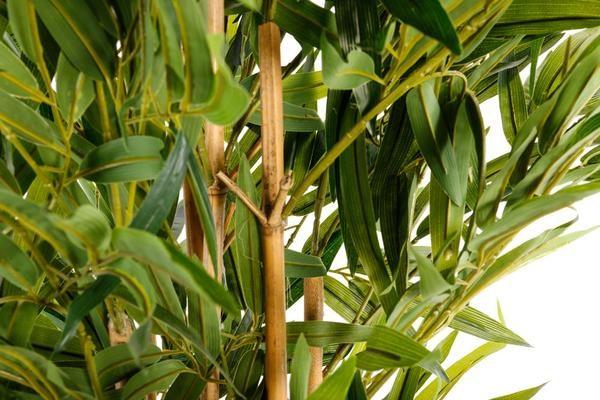 arbre-artificiel-bambou