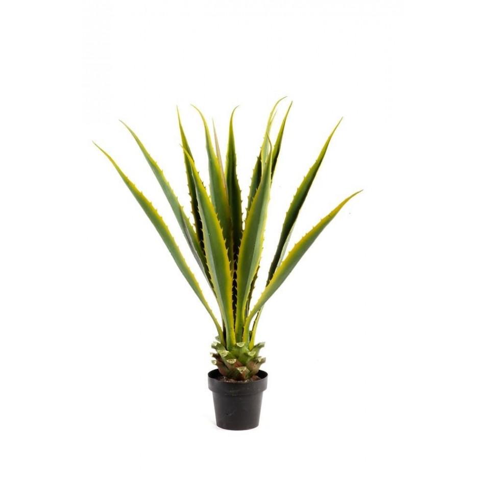 agave-artificielle