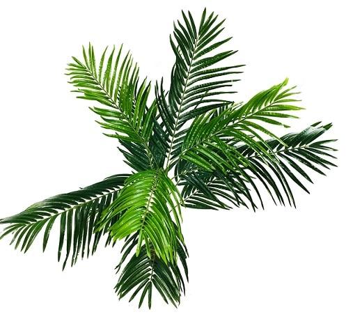 faux-palmier-150cm-2