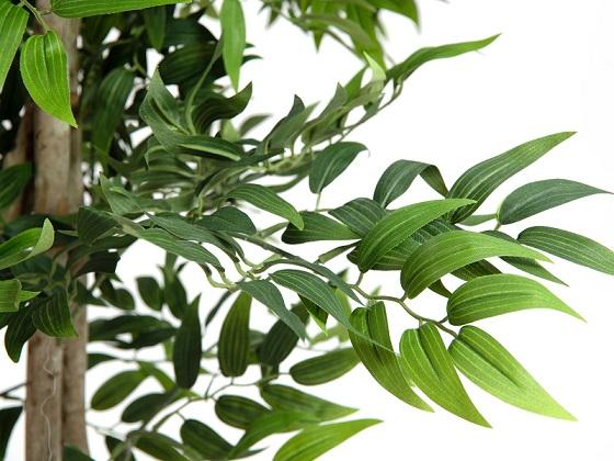 ficus-longifolia-artificiel-2