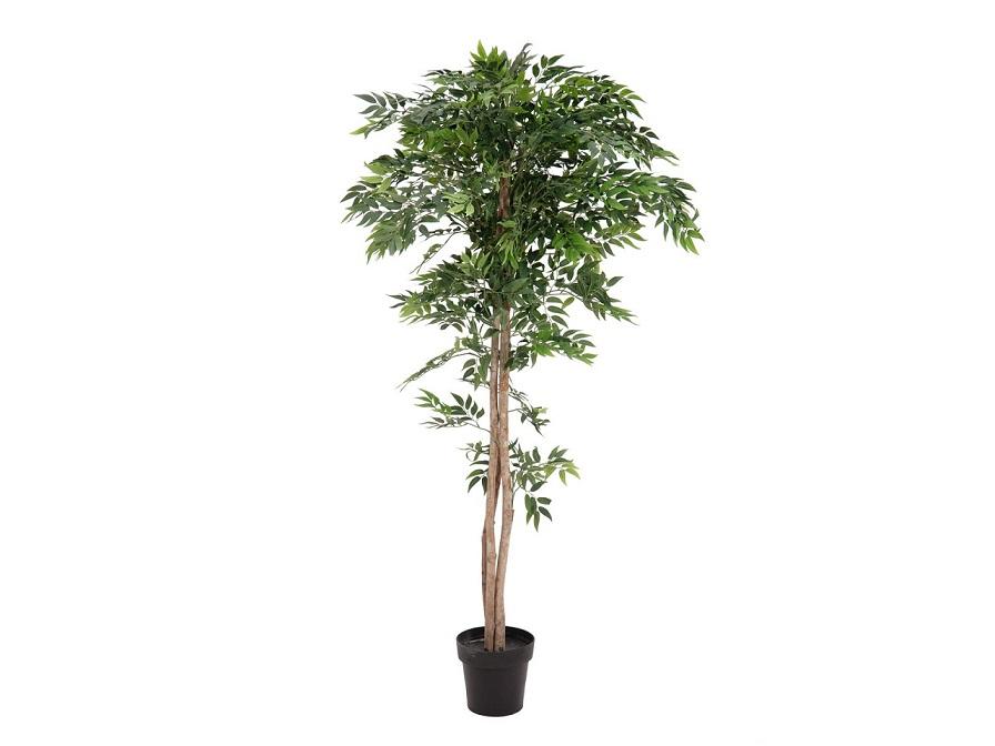 ficus-longifolia-artificiel