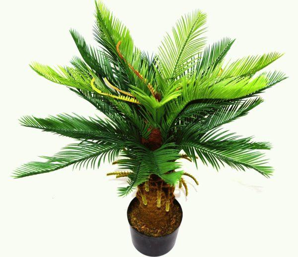 palmier-artificiel-cycas