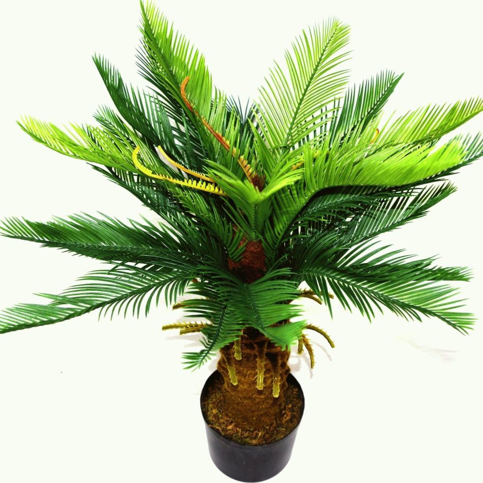 palmier-artificiel-cycas