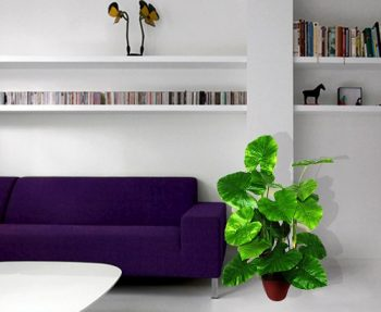 plante-artificielle-interieur