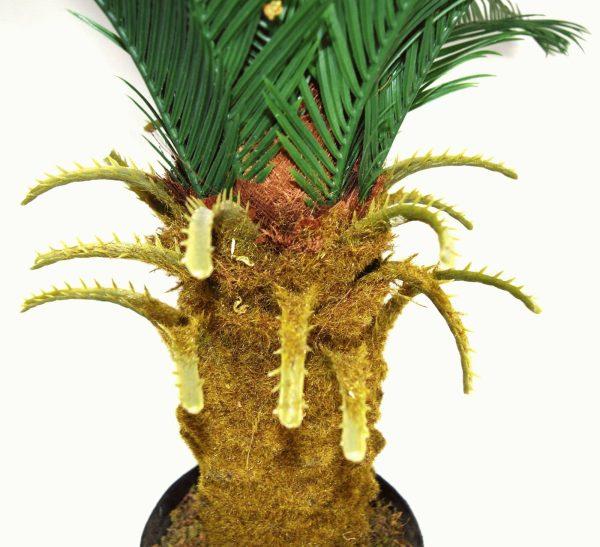 plante-cycas-plastique