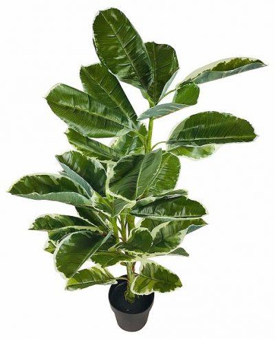 plante-ficus-artificiel