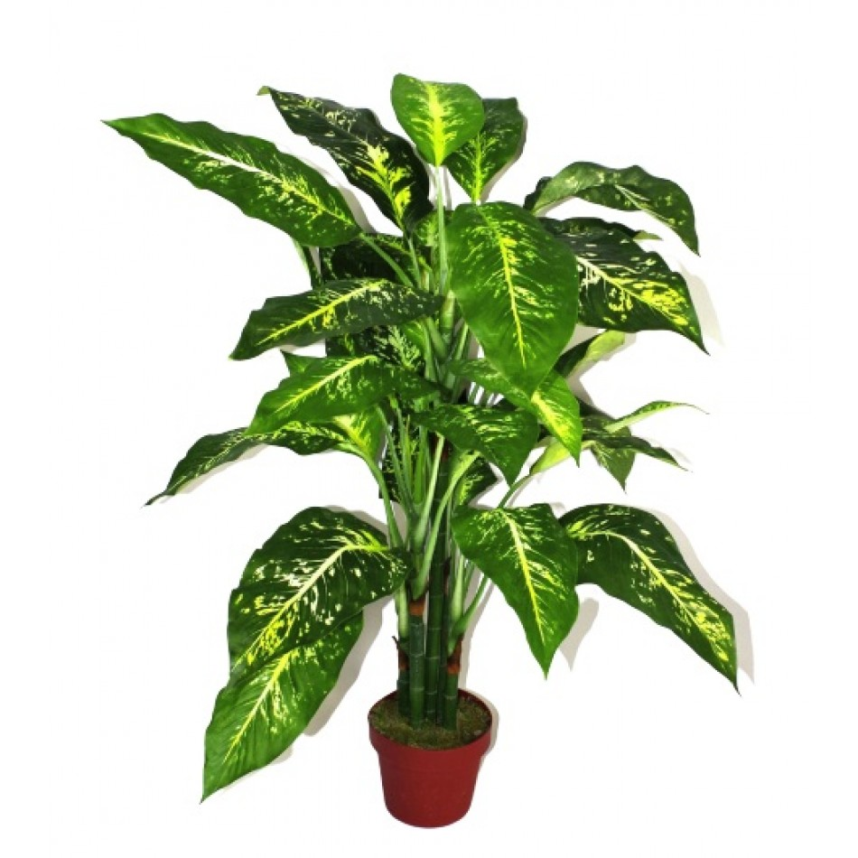 aglaonema-artificiel