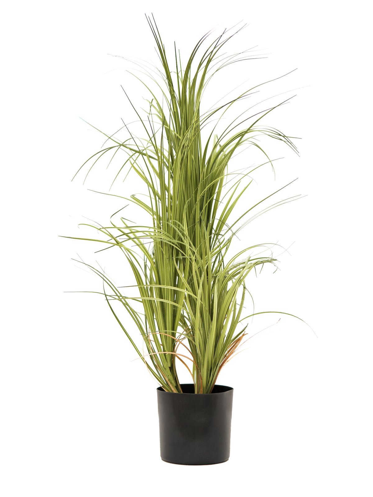 buisson-dracena-artificiel-1.