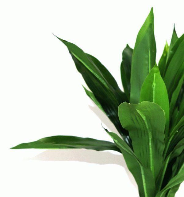 plante-artificielle-alinea