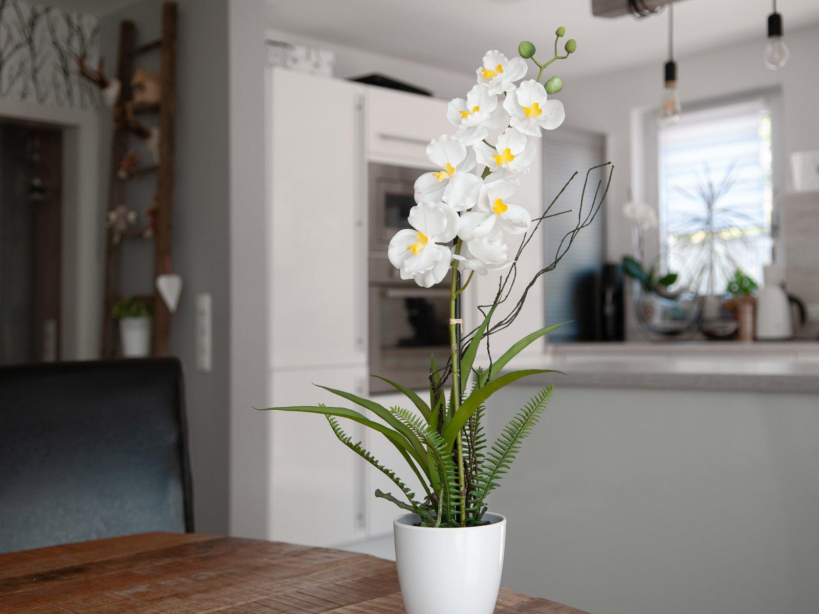 orchidee-artificiel-haut-de-gamme-2