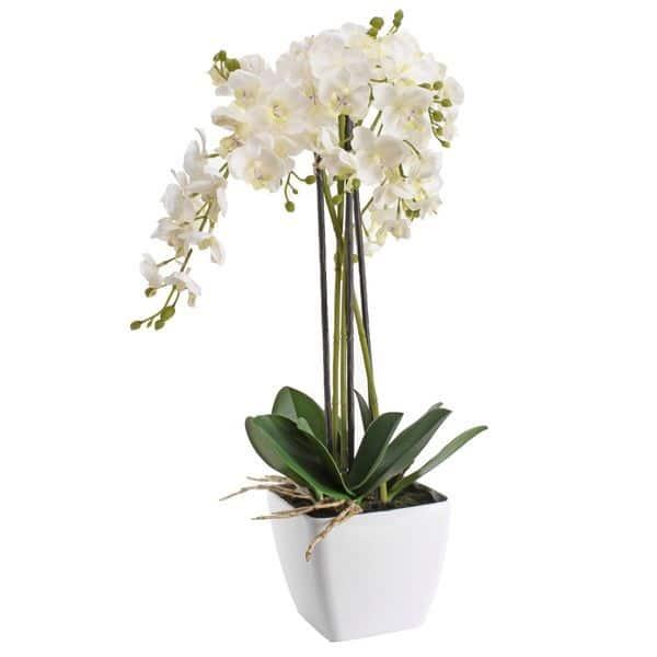 orchidee-artificiel