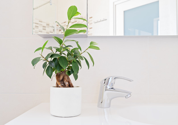 plante-artificielle-salle-de-bain