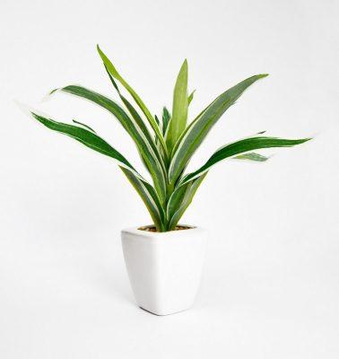 plante-verte-artificielle