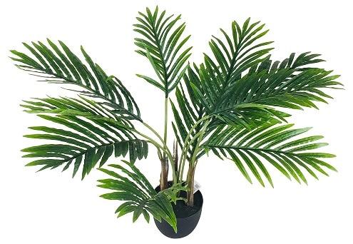 faux-palmier