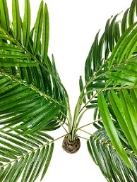 grand-palmier-artificiel