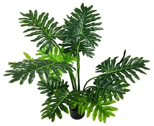 philodendron-artificiel-no3-2