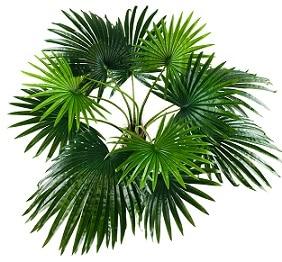 palmier-artificiel-150cm-2