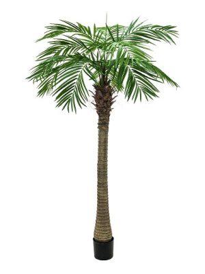 palmier-artificiel-300cm