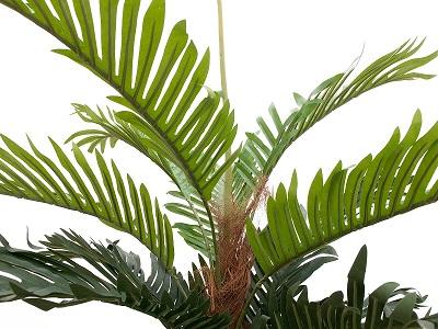 palmier-kentia-180-cm-2