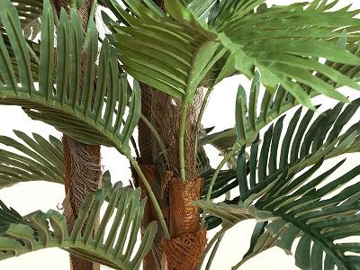 palmier-kentia-150-cm-3