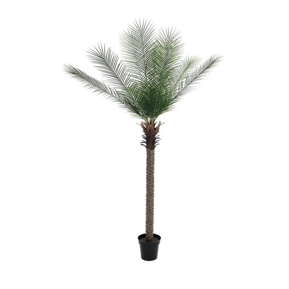 palmier-phoenix-artificiel-220cm