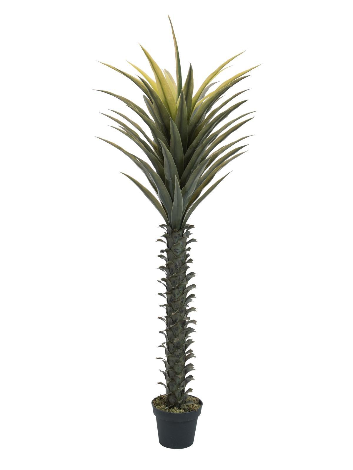 grand-yucca-artificiel