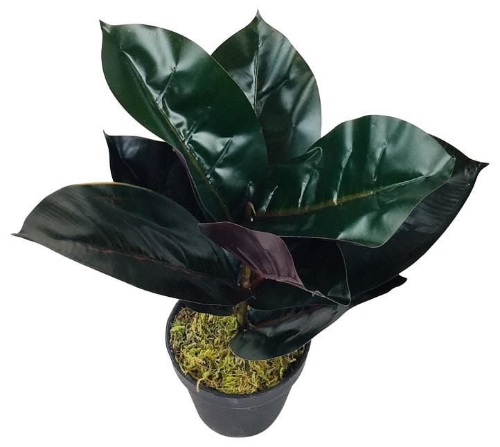 plante-artificielle-rubber-47-cm