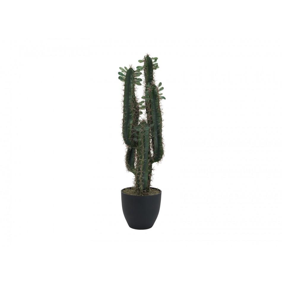 cactus-artificiel