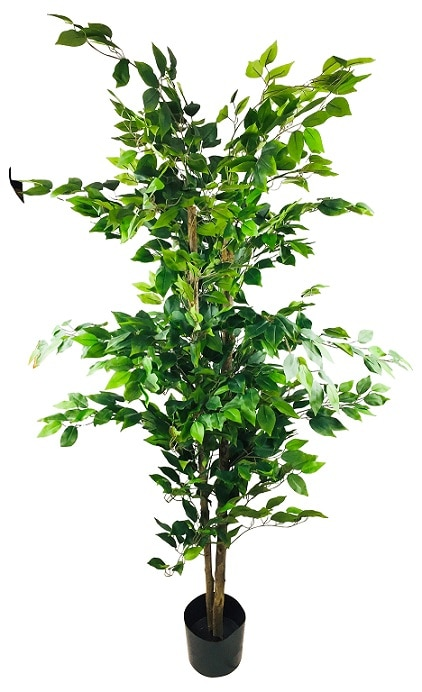 grand-ficus-artificiel