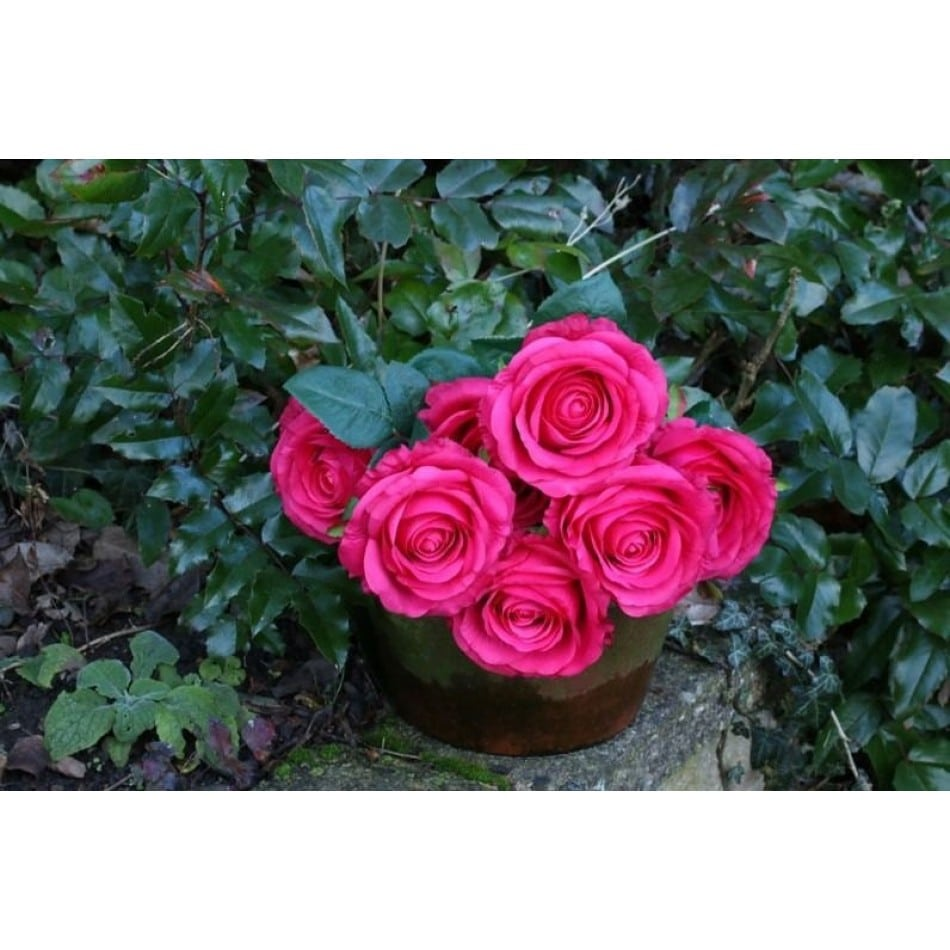 rose-artificielle-fushia