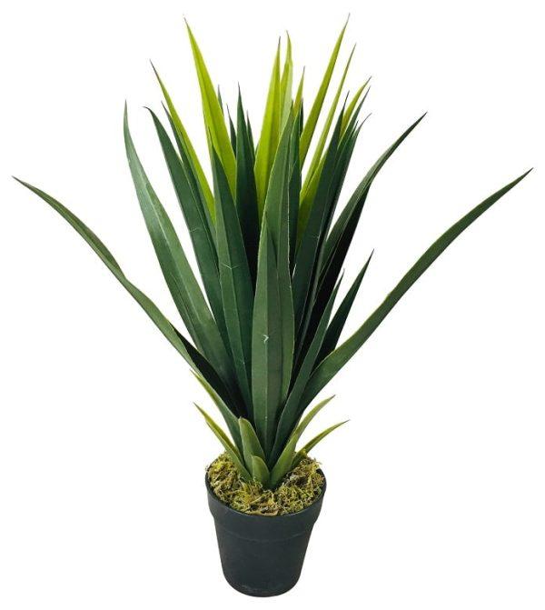 yucca-artificiel-gifi