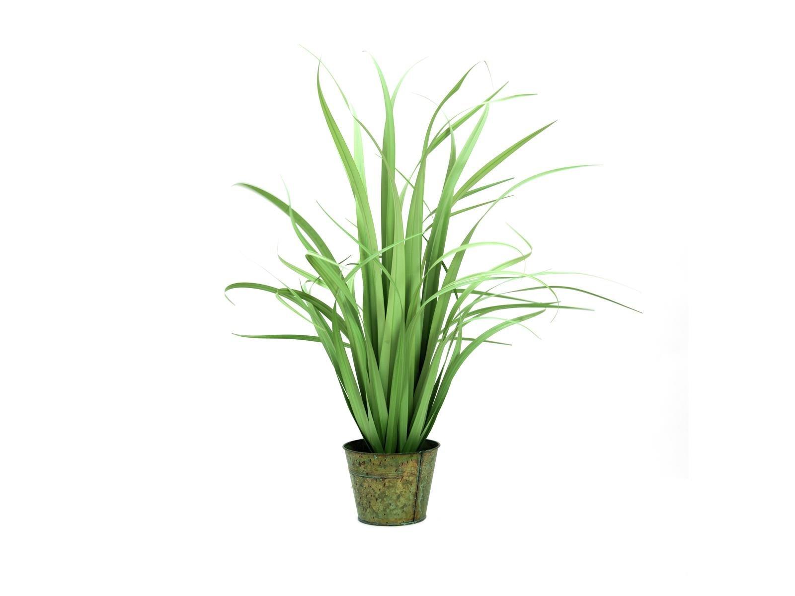 yucca-artificiel-80cm
