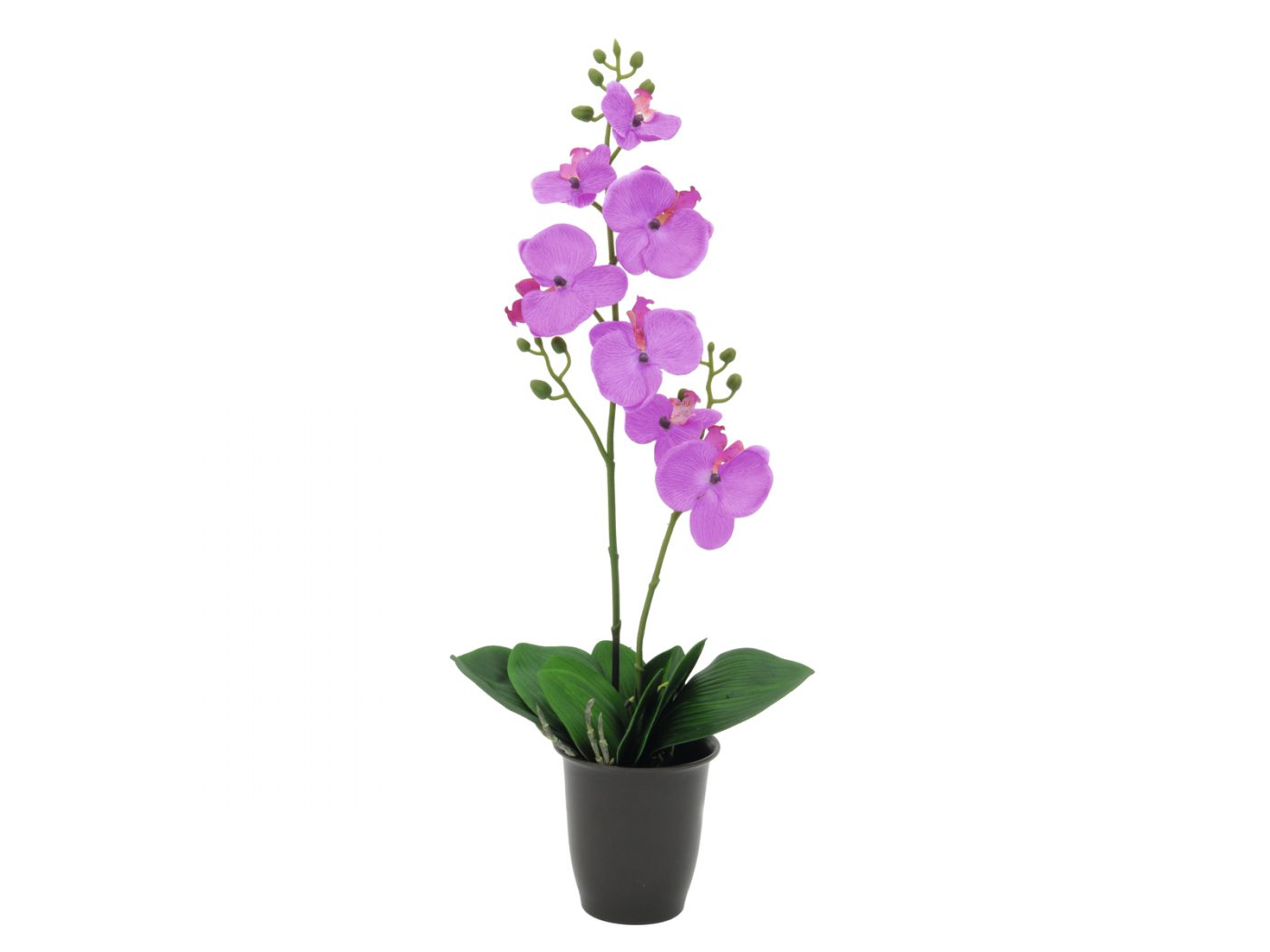 orchidee-artificielle-pourpre-57cm