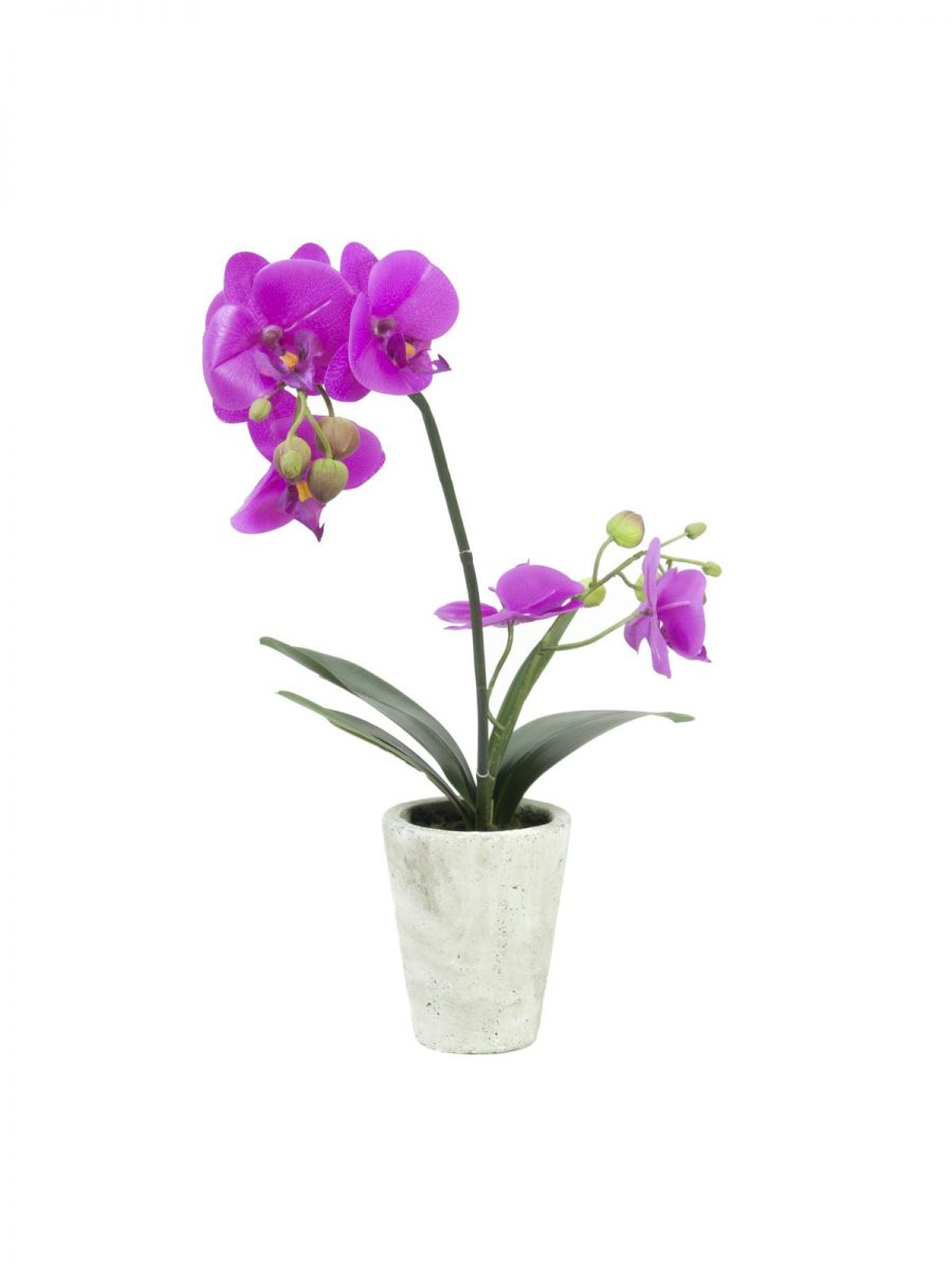 orchidee-artificiel-mauve