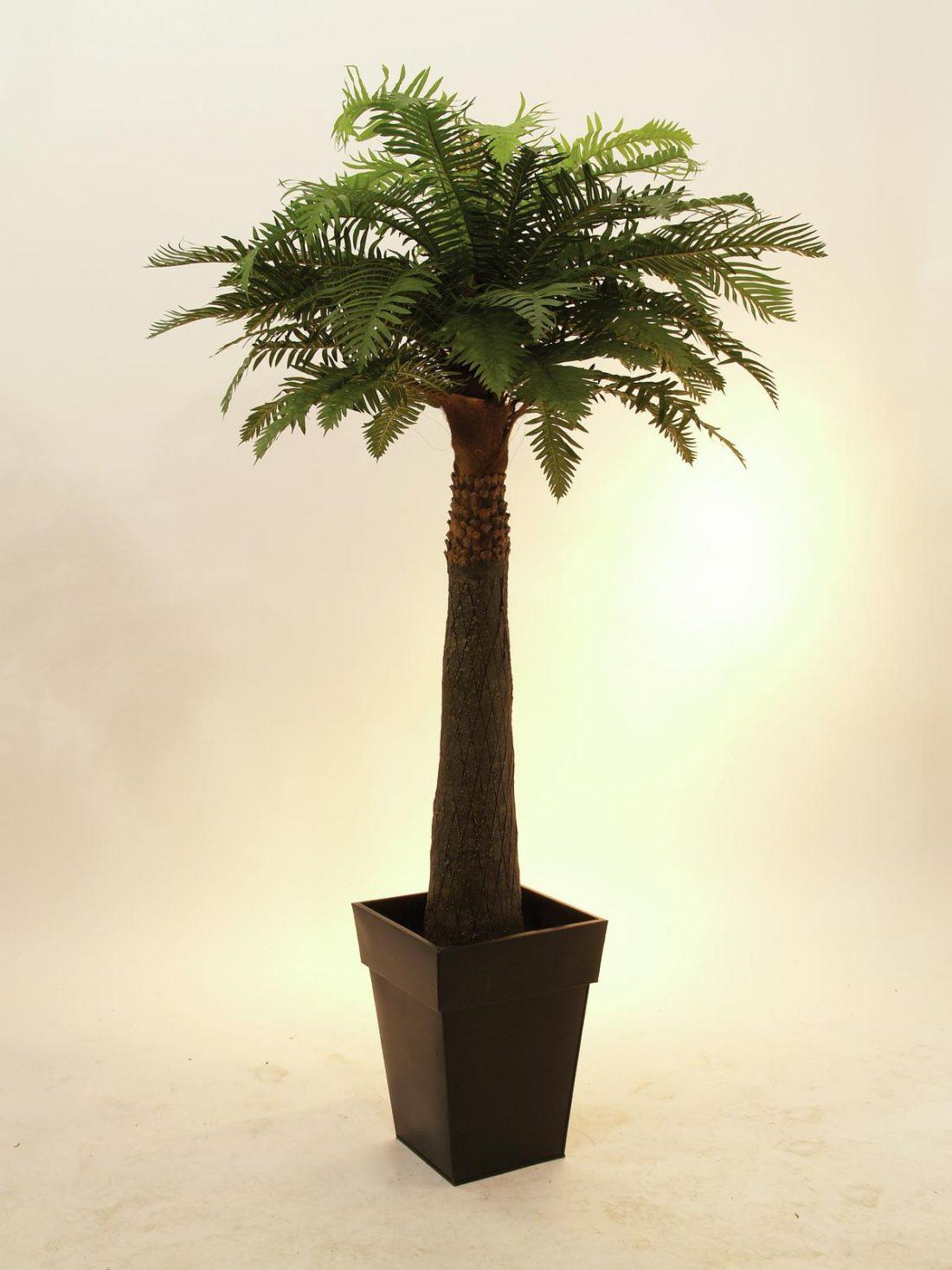 palmier-artificiel-fougere
