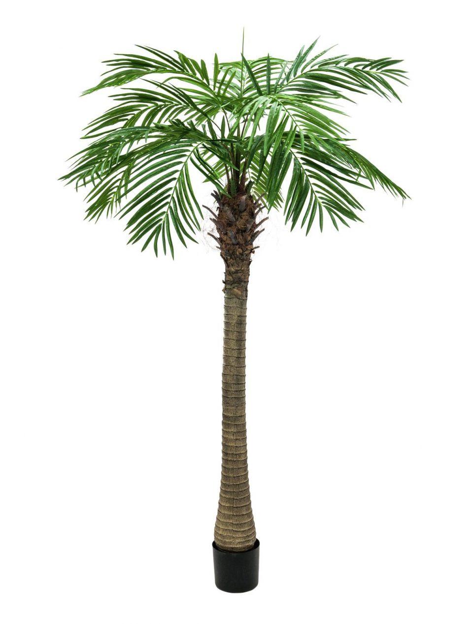 palmier-dattier-artificiel