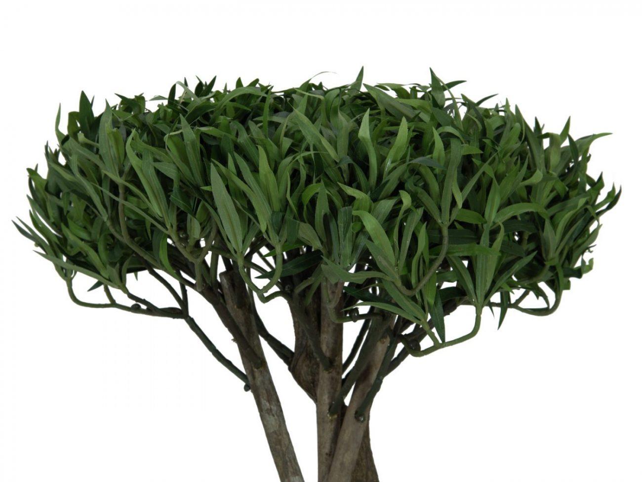 bonsai-synthétique