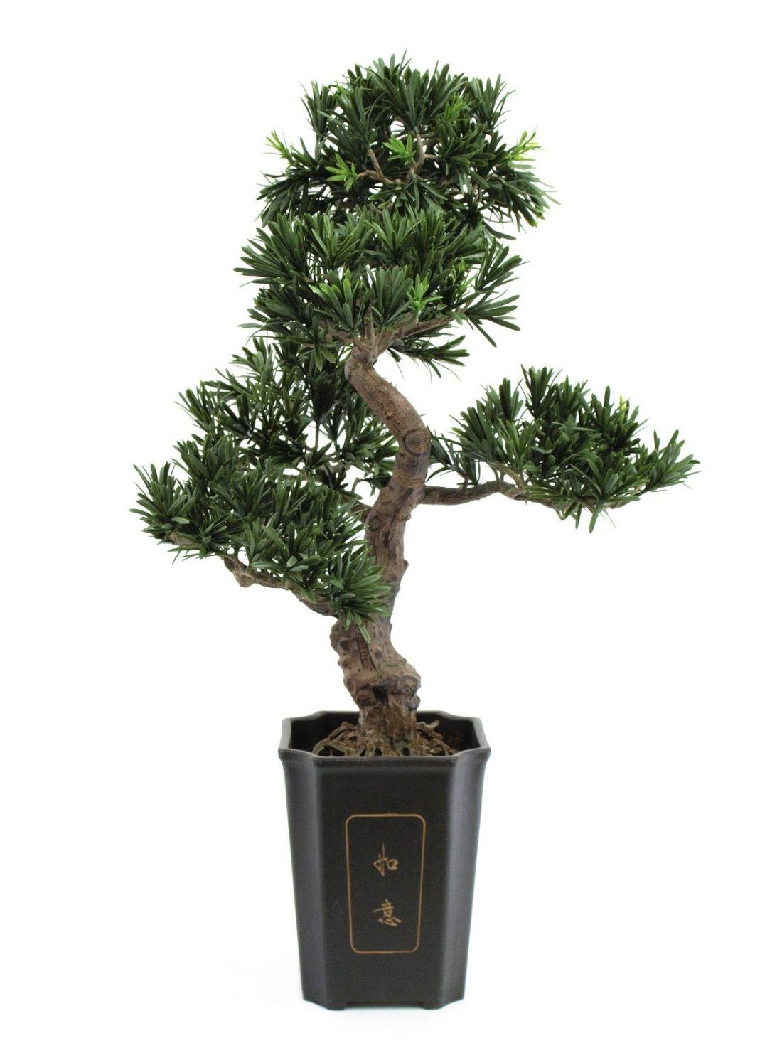 bonsai-artificiel-haut-de-gamme