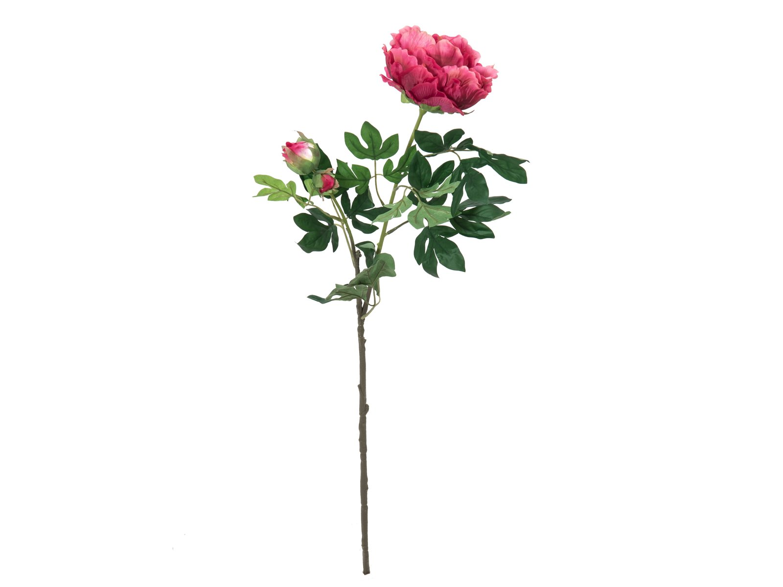 pivoine-artificiel-geant