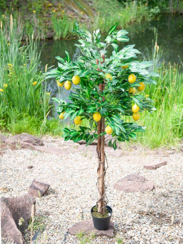 citronnier-artificiel-6