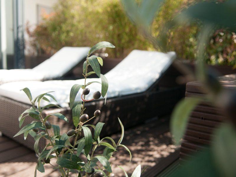 olivier-artificiel-90cm-5